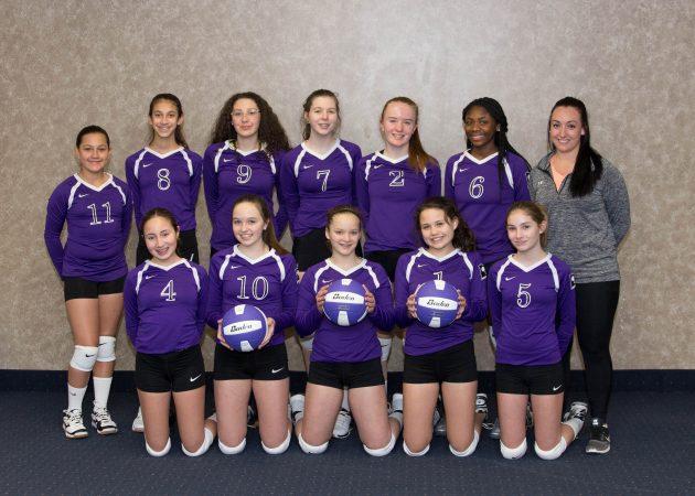 CLUB 43 Volleyball U14P 2016-17